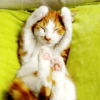 tuberose: (crinkle kittytoes.)