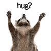 pensnest: small animal with widespread forepaws, caption Hug? (Hug?)