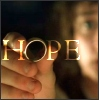 "hope: Frodo holding the ring with ""Hope"" caption (hope old skool)"