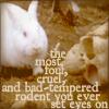 thaily: (Killer bunny)