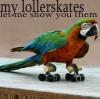 flightless: Macaw Lollerskates (Lollerskates)