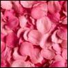 ses: (misc - petals)