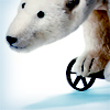 commodorified: a stuffed polar bear on wheels. (bear on wheels)