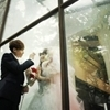 aikolynn: (Khuntoria - Through The Glass)