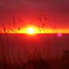 spurenimsand: (sunset, wales09, aber)