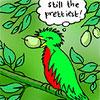 buddleia: (Birds Still The Prettiest)