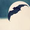 starfleet: A bat against the full moon (The Vigilante - Aspirations)