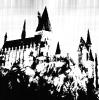 wizardingmods: (Default)