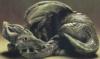 eldriwolf:  green Dragon (Chris)
