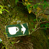 hope: A sign with a teacup and an arrow affixed to a tree (tea -->)