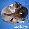 vilakins: (cuddles)