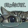 lir: (cat)
