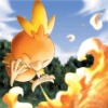 chamo_chan: (fire torchic)