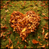 vaarna: (autumn heart) (Default)
