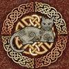 catwoman2704: (Default)