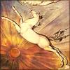 kelpie: (Blake Pegasus)