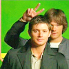 laylee: (Jared and Jensen)