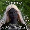 speaker_to_customers: (Cierre)