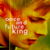 thedeadparrot: (once and future king)