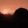 hambel: Sunset (Sunset) (Default)