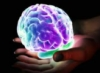 sabrinamari: (...what is brain?)