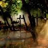 sabrinamari: (graveyard 1)