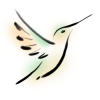 selasphorus: Brushpaint-stylized image of a female rufous hummingbird (Selasphorus: Brush)