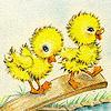 jane: (SP - Ostara - Chickies!)
