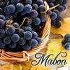 jane: (SP - Mabon - Grapes)