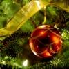 madeleone: (ornament)