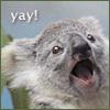 killabeez: (koala yay)