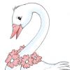doj: (BEAUTIFUL SWAN)
