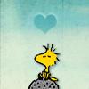 peanuts: (Woodstock)