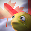 chatananas: This Canadian is suffering (CANADA: Tears in front of the flag)