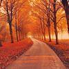 vadakiss: (fall)