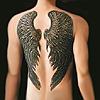 mific: (wing tattoo)