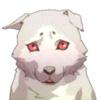 ultranos: koromaru (shiba inu from persona 3) looking sad (koromaru is a sad puppy)