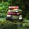 lavendertook: (books in the wild)