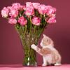 lavendertook: (kitten and rose bouquet)