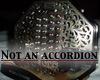 xylaria: (accordion) (Default)