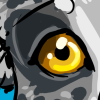 rythos: Gold-eyed, blue merle border collie, peeking into the frame and blocking most of it. (Default)
