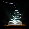 darkemeralds: Image of an open book whose pages are turning into wings and flying away (Winged book)