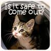 iadorespike: (Kitty isitsafetocomeout by jhava)