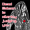 "piranha: MRI of dead salmon, text ""dead salmon is silently judging you"" (research)"
