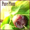 morriganfearn: (plum)