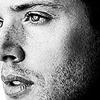 carson_leigh: (Jensen)