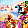 bossymarmalade: krishna blowing the conch (svaha)