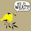 mediaville: (birds & bees)