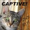 tenaya: (captive)