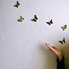 elevenstrikes: blowing butterflies (fly fly away)